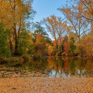Jesenné zátišie pri rybníčku