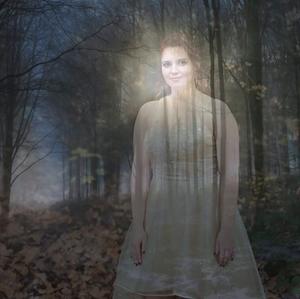 Tajomné stretnutie v lese
