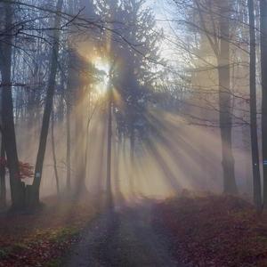 Čarovnou cestičkou