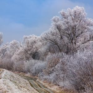 Kľukaté cesty zimou