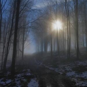 Cestou k svetlu