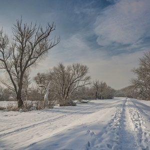 Na prechádzke zimou
