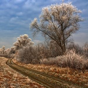 Cestou k zime