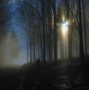 Hľadanie svetla