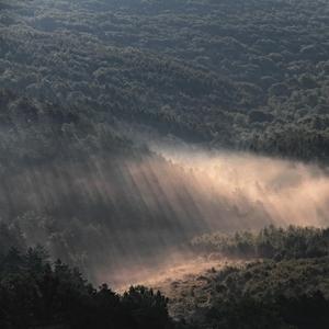 Keď svetlo hmlu rozháňa