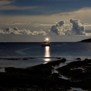 Polnoc v prístave