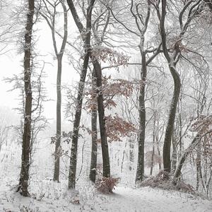 Zimná panoráma