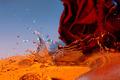 Vodná ruža