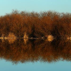 Zrkadlové jazero