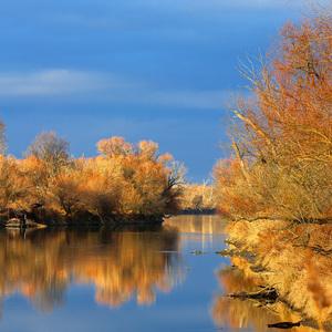Jesenná Morava