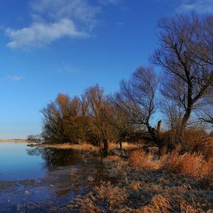 Jazero na poli