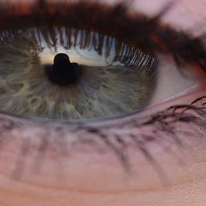 Silueta v oku