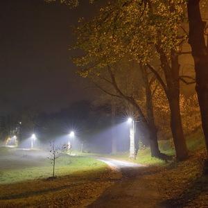 Jesenný večer v hmle