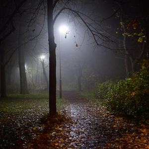 atmosfera parku