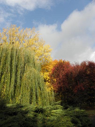 park Nitra 2