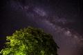 Mliečna dráha nad orechom