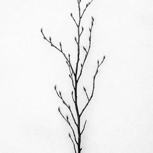 Zimný minimalizmus