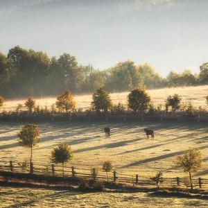 Ráno na Bouzovsku
