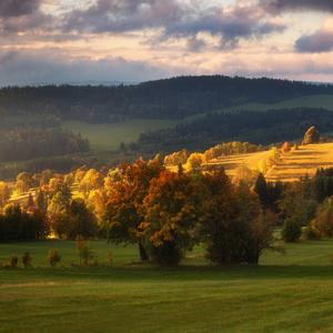 Barvy podzimního rána