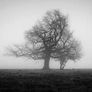 Dva osamělí