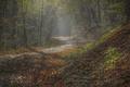 Jesenné lúče v Mokrej doline