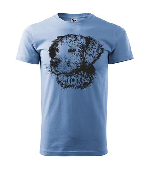 Pes modrá 12€
