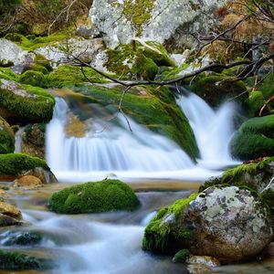 Biela voda