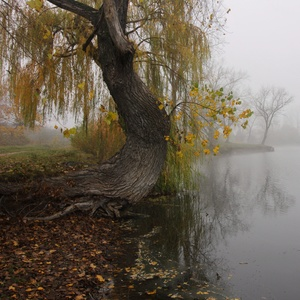 u jazera za hmly