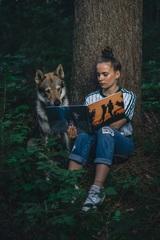 Rozprávky v lese