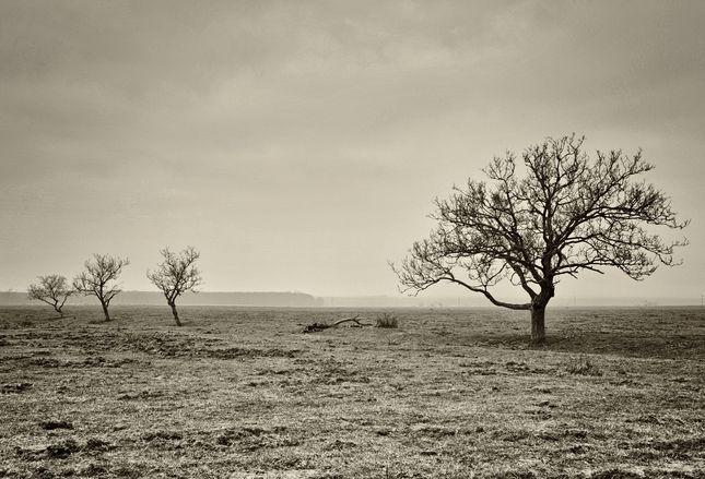 krajinka..
