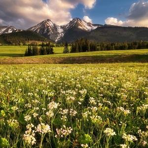 Tatranská jar