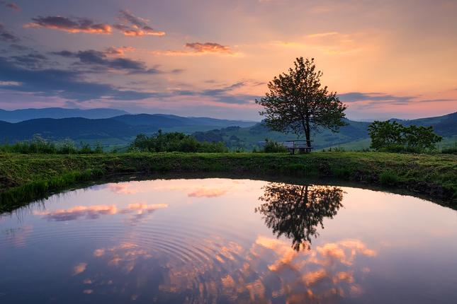 Hradný rybník