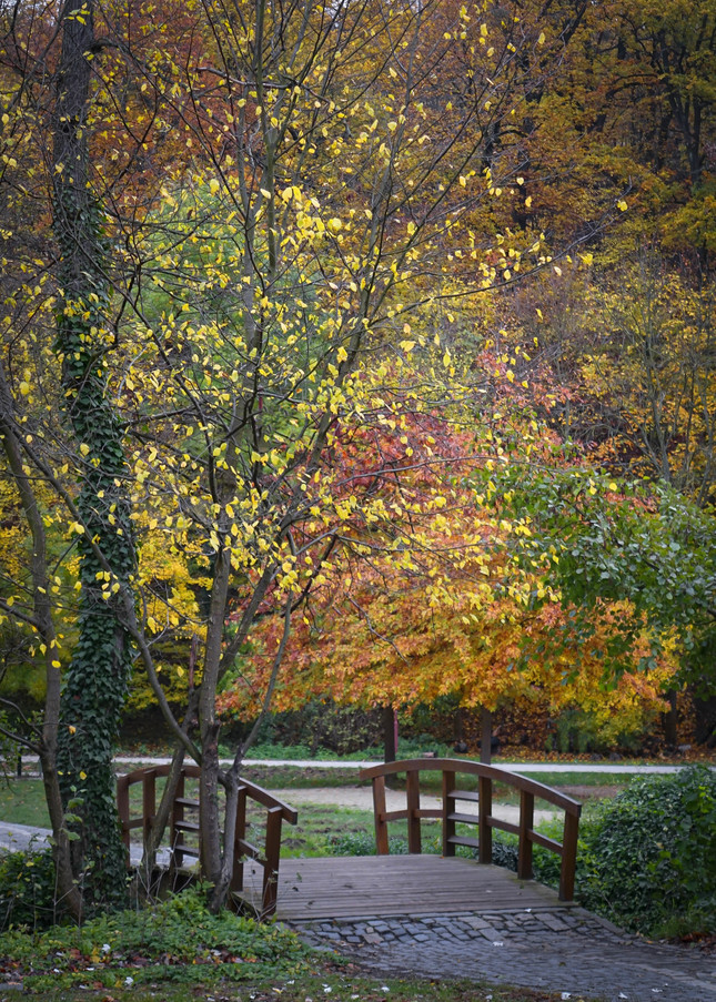 Jesenná idylka...