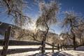 Zima sa blizi