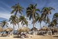 Arriba Aruba