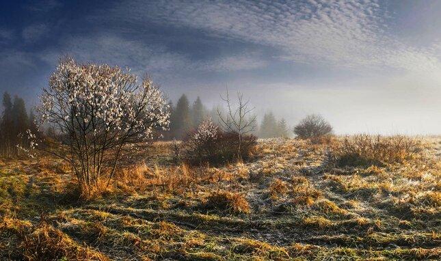 Novembrové ráno v Beskydách