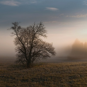 Putovanie za hmlou a slnkom