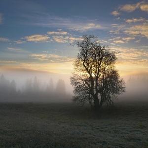 Studené novembrové ráno