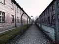 Auschwitz Birkenau I a II