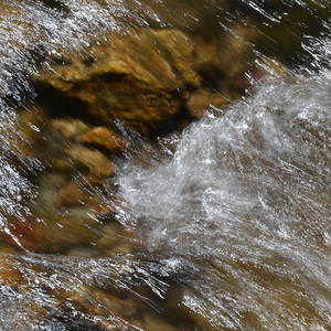 Dynamika vody