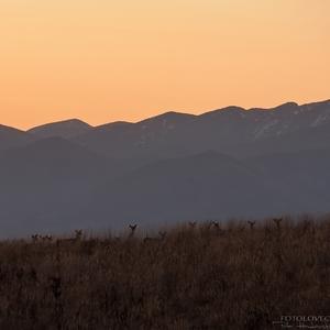 -Pred východom slnka-