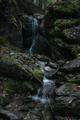 Suchý potok