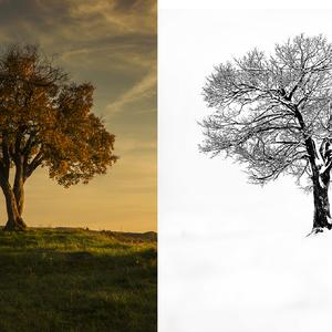 Jeseň & zima