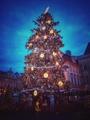 Pražský stromček