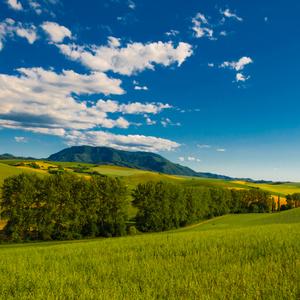 Cez lúky cez hory