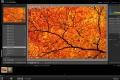 Adobe Lightroom 3 (7.časť) – Import