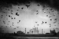 Taj Mahal - od legendy k pravde