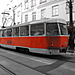 MatlonFoto_111013DSCN0076.jpg
