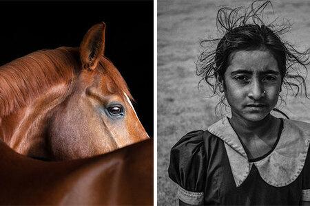 Sony National & Regional Photography Awards oznámila víťazov