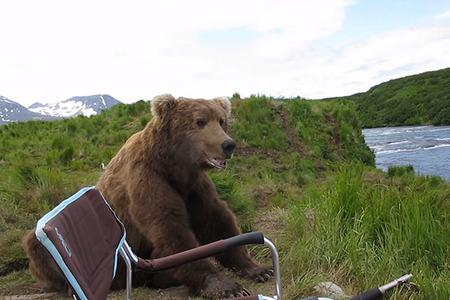Fotografovanie medveďov pri McNeil River na Aljaške